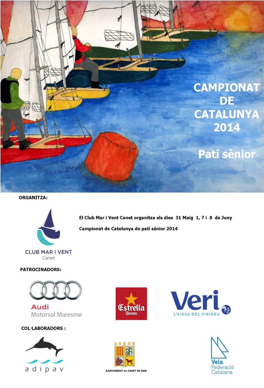 Cartell CCPV 2014